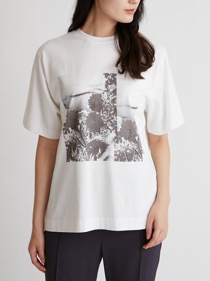 相片印刷T-Shirt