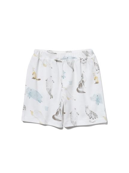 【KIDS】【旭山動物園】動物印花 童裝短褲